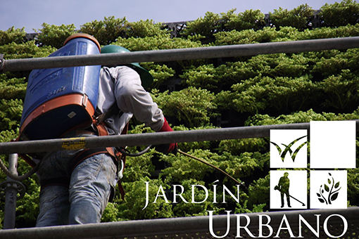 Metodos para fertilizar tu jardin vertical vivero chaclacayo for Vivero tu jardin