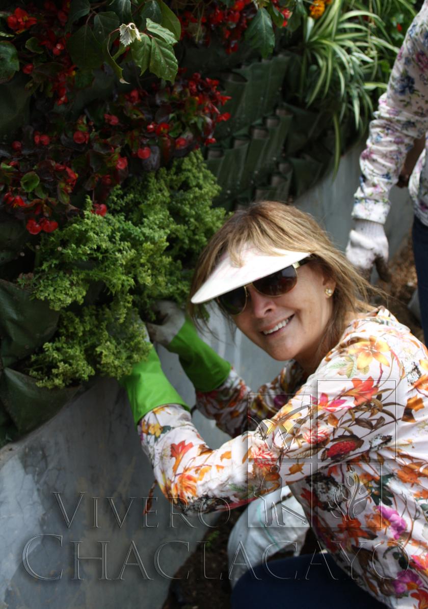 Taller de instalaci n de jardines verticales 15 de marzo for Instalacion de jardines verticales