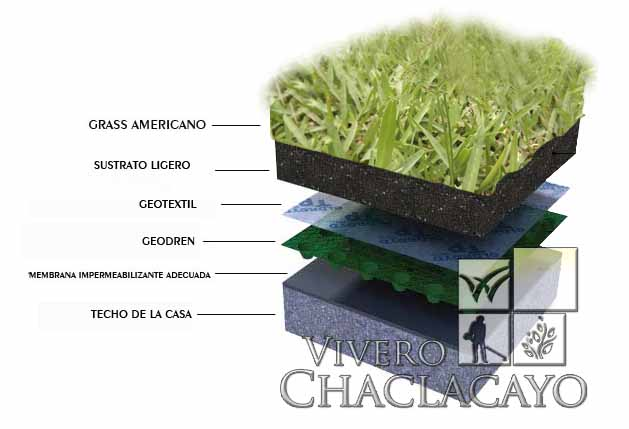 Techo verde extensivo e intensivo vivero chaclacayo for Techos y paredes verdes