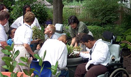 Terapia horticola definicion vivero chaclacayo for Horticultura definicion