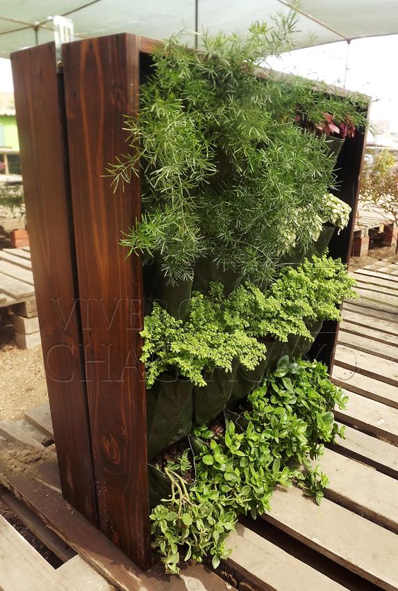 Cuadro vivo simple cuadro vegetal vivero chaclacayo - Jardines verticales de interior ...