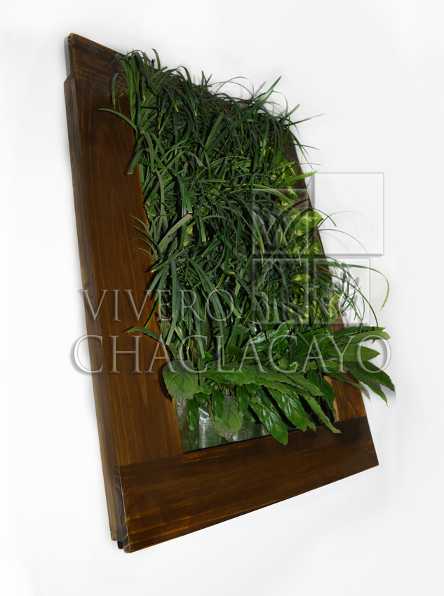 Cuadro vivo m vil cuadro vegetal vivero chaclacayo for Jardines verticales wikipedia