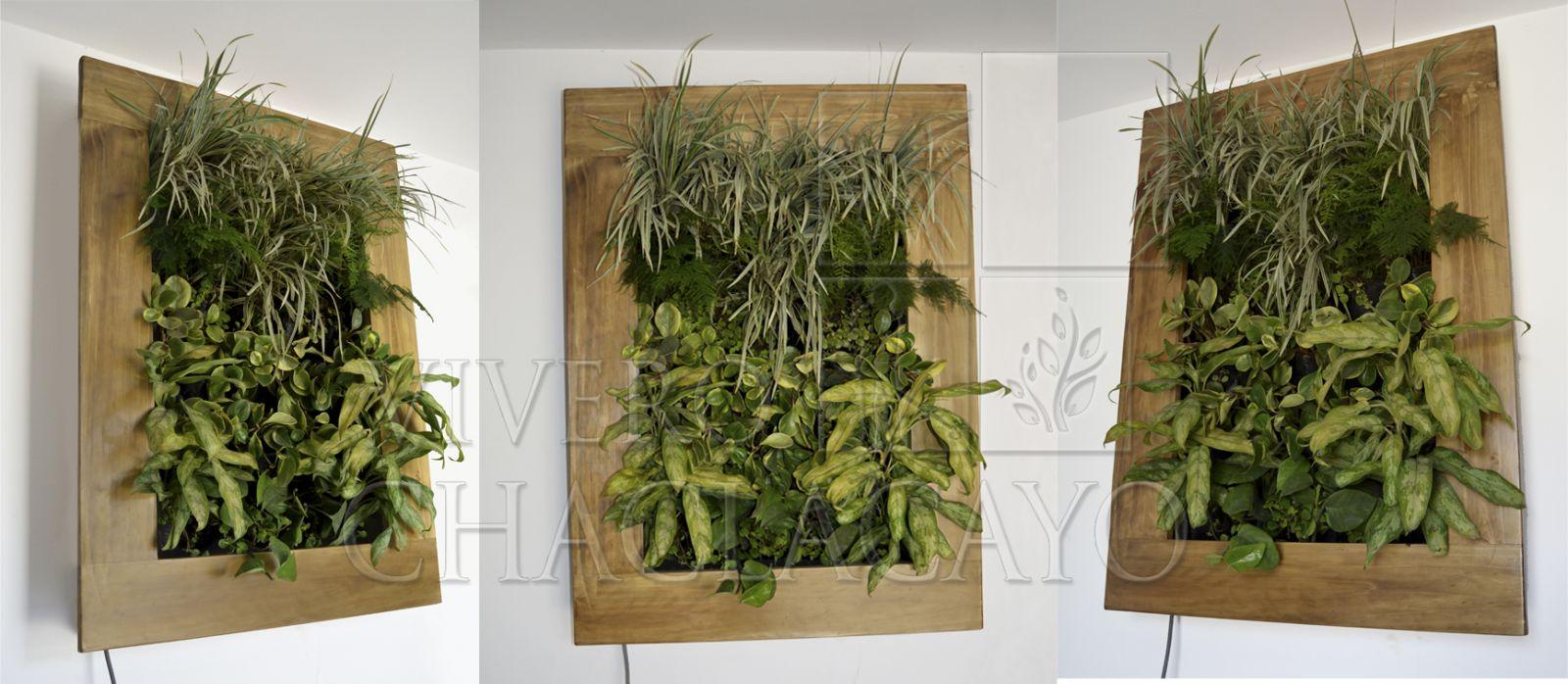 Cuadro vivo - Cuadro jardin vertical ...