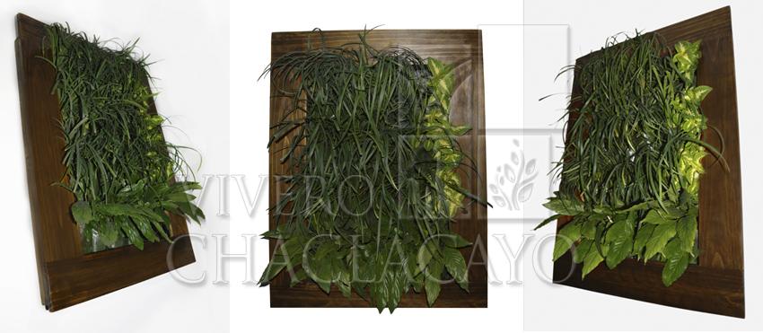 Cuadro vivo m vil cuadro vegetal vivero chaclacayo for Jardin vertical sodimac