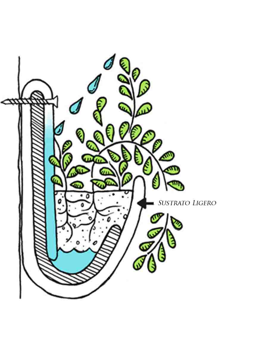 Calculo de agua para riego en jardines verticales vivero for Riego jardin vertical
