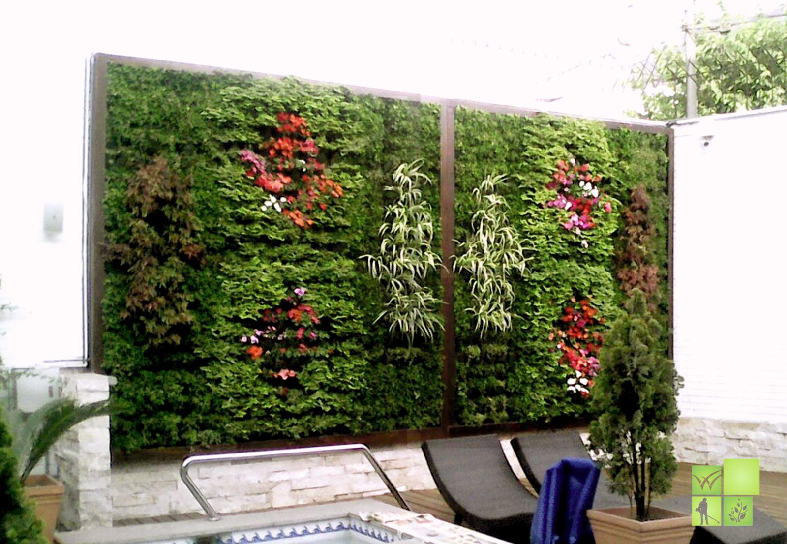 Aplicaci n del paisajismo en jardines verticales vivero for Paredes verticales de plantas