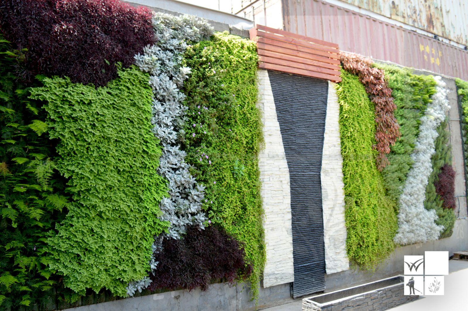 Beneficios de los green walls o muros verdes vivero for Muros verdes beneficios