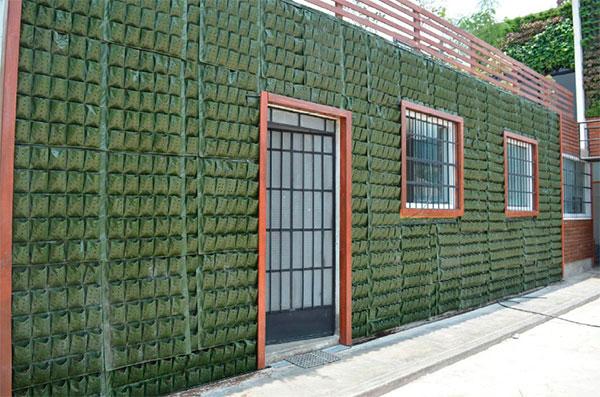 Jardines verticales y muros verdes vivero chaclacayo for Muros y fachadas verdes jardines verticales