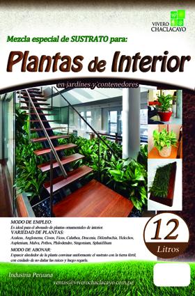 Sustrato para plantas de interior vivero chaclacayo for Viveros plantas de interior